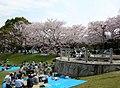 長山公園 - panoramio (1).jpg