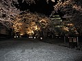 鶴ヶ城 - panoramio (3).jpg