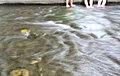 청계전 물의 흐름.jpg