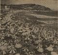해운대해수욕장 1973년.png