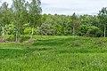 12 Остепненные склоны и балочные леса по правому берегу долины р. Осетрик.jpg