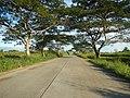 1567Franciso Viola Highway San Rafael Bulacan 09.jpg