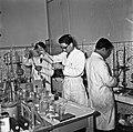 1958 techniciens en laboratoire au CNRZ Cliché Jean Joseph Weber.jpg