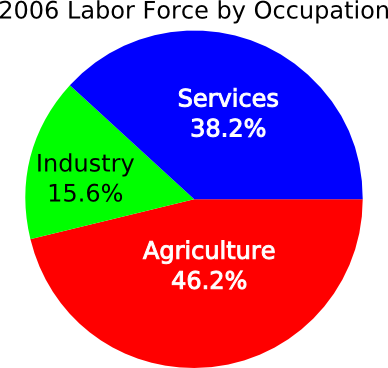 2006 Labor Force by Occupation