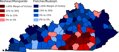 Image showing electoral support for candidates by county