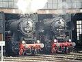 20090321. 1.Dampfloktreffen.-052.jpg
