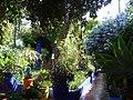 2010-06-20 - Marrakesch - Jardin Majorelle - letzte Ruhestätte von Yves Saint Laurent - panoramio.jpg