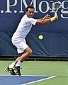 2013 US Open (Tennis) - Qualifying Round - Victor Estrella Burgos (9734545721).jpg