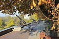 2014 Chernihiv Гармати з бастіонів Чернігівської фортеці Фото 7.jpg