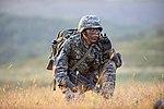 2015.9.16. 해병대 2사단-한미 해병 합동훈련 - 16th Sep. 2015. ROK 2nd Marine Division - ROKMC & USMC joint trainning (21524445704).jpg