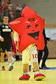 20150106 1943 Handball AUTSUI 7592.jpg