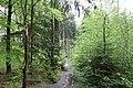 20210518. Sächsische Schweiz.Rauenstein.-178.jpg
