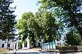 61-224-5032 вишневецький парк.jpg