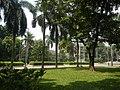 71Mehan Garden Ermita Manila Universidad de Manila 45.jpg