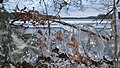 8653 Them, Denmark - panoramio (4).jpg