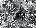 99-Surveying For The Panama Railroad in 1850.jpg