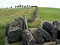 A Boundary Wall - geograph.org.uk - 479723.jpg
