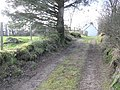 A secluded lane - geograph.org.uk - 112195.jpg