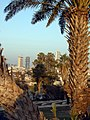 Abraham Shechterman Garden Tel Aviv Jaffa - panoramio - Anatoli Axelrod (1).jpg