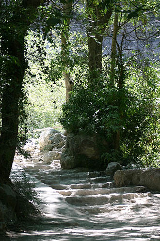 Fontaine de Vaucluse (spring) - Path leading to the spring