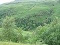 Across Glen Shira - geograph.org.uk - 482945.jpg