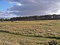 Across the Nairn Golf Course - geograph.org.uk - 273833.jpg