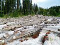 Adams Creek Crossing in the Mt Adams Wilderness.JPG