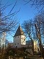 Adlerturm Dortmund, 28.1.14 - panoramio (1).jpg
