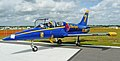 Aero Vodochody L-39 Albatros in Blue Angels colors, Sun'N Fun airshow.jpg