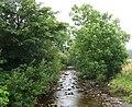 Afon Prysor - view upstream from Bryn-celynog bridge - geograph.org.uk - 517942.jpg