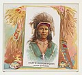 Agate Arrow Point, Warm Springs, from the American Indian Chiefs series (N36) for Allen & Ginter Cigarettes MET DP838923.jpg