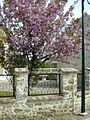 Aincourt's Spring.jpg