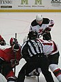 Albany Devils vs. Portland Pirates - December 28, 2013 (11621963495).jpg