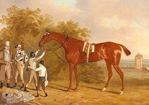 Altisidora - Mr. Watt's Altisidora, Winner of the 1813 St. Leger by Clifton Tomson