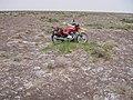 Alxa Zuoqi, Alxa, Inner Mongolia, China - panoramio (64).jpg