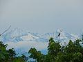 Amanecer en la Sierra.jpg