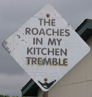 Amarillo Tx - Dynamite Museum - Roaches Kitchen