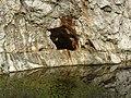 Amfiteátrum 10. sz. barlang2.jpg