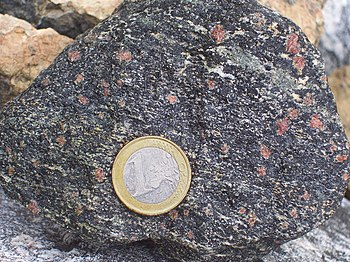 Amfiboliet Wikipedia