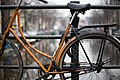Amsterdam, Netherlands (Unsplash LxIiJXmOv2k).jpg