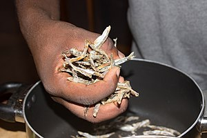 European anchovy - Anchovies in Ghana