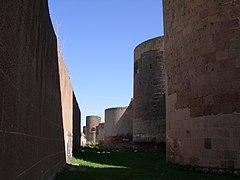 Ani, Stadtmauer (39505607725)