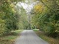 Approaching Braunston-in-Rutland - geograph.org.uk - 599263.jpg