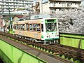 Arakawaline-7019.jpg