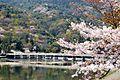 Arashiyama 2009-04-09 (3667155594).jpg
