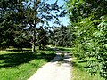 Arboretum - panoramio (6).jpg