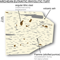 Archean felsic volcanic rock containing fiamme structure