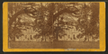 Ashland (house), from Robert N. Dennis collection of stereoscopic views.png