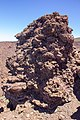 At Teide National Park 2019 066.jpg