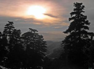 Atardecer en el Pinsapar de la Sierra de las Nieves.tif